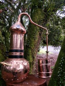 Traditional Copper Alembi Still for Hydrosol Production